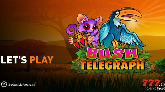 Lass uns Bush Telegraph spielen